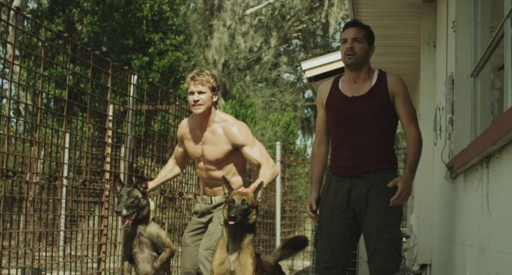 Rusty James Dogs